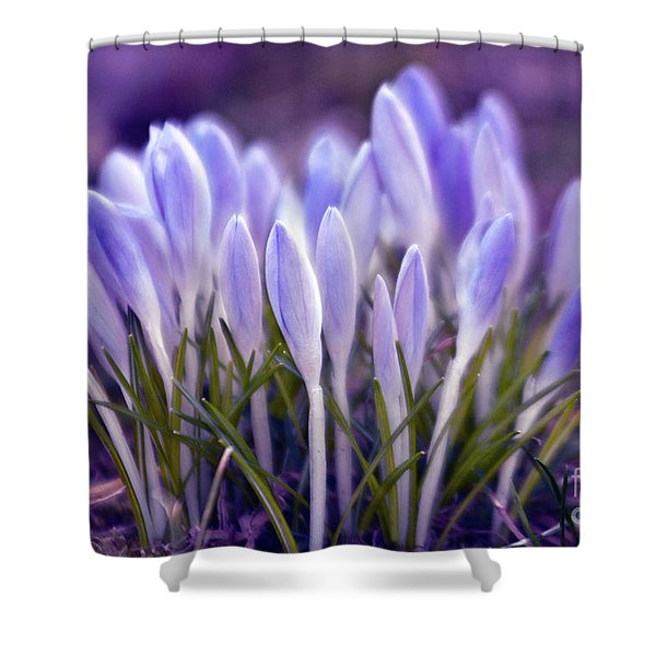 Shower Curtain featuring the photograph Ultra Violet Sound by Silva Wischeropp