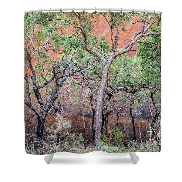 Uluru 05 Shower Curtain