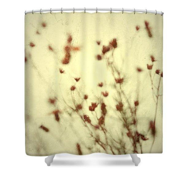 Undefined  Shower Curtain