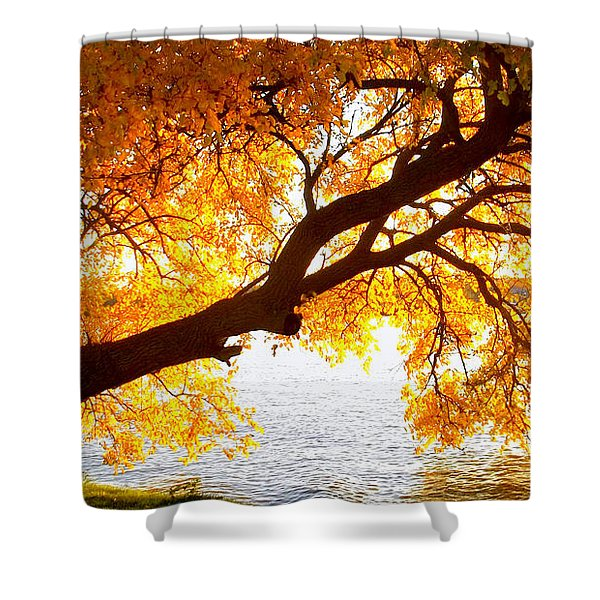 Under The Yellow Tree Shower Curtain