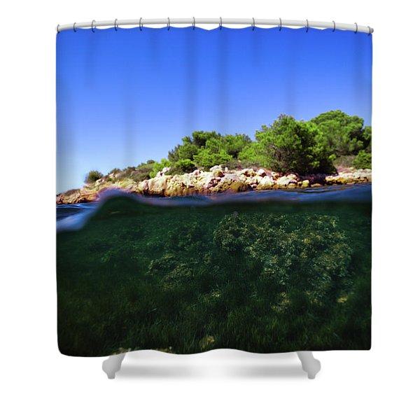 Underwater Life Shower Curtain
