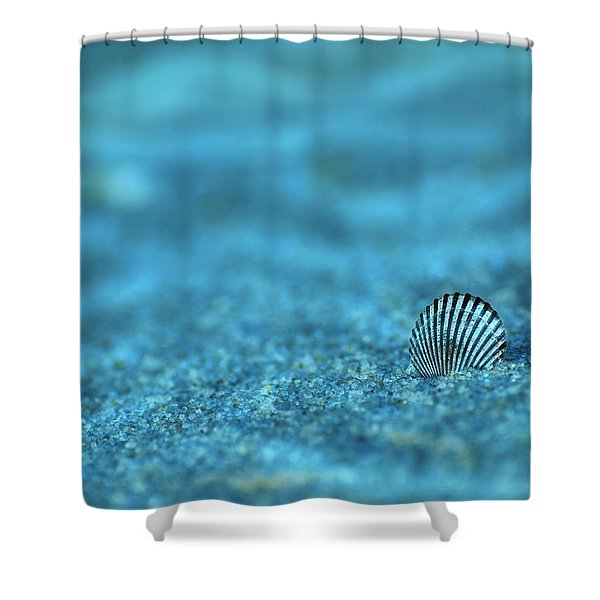 Underwater Seashell - Jersey Shore Shower Curtain