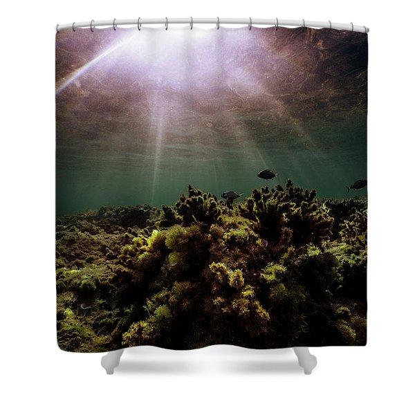 Underwater Sunset Shower Curtain