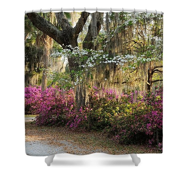 Unpaved Road In Spring Shower Curtain