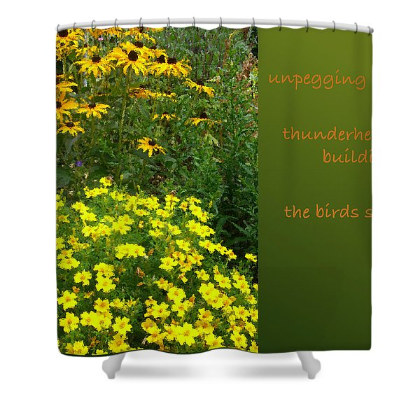 Unpegging Wash Haiga Shower Curtain
