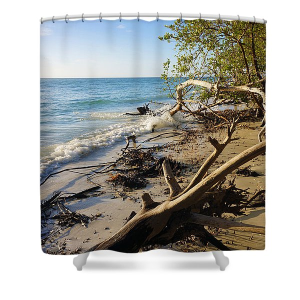 The Unspoiled Beaty Of Barefoot Beach Preserve In Naples, Fl Shower Curtain