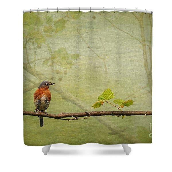 Until Spring Shower Curtain