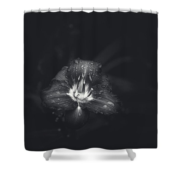 Untitled Lily Shower Curtain
