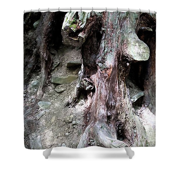 Unusual Tree Root Shower Curtain