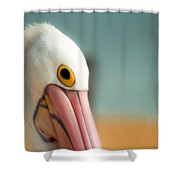 Up Close And Personal With My Pelican Friend Shower Curtain