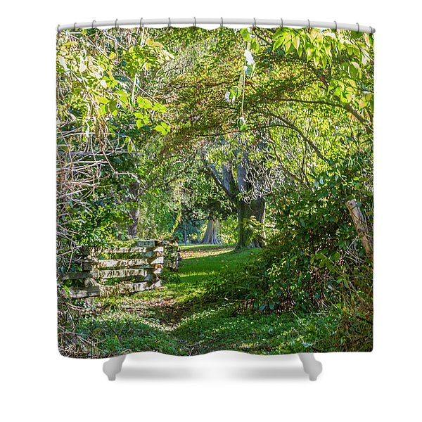Up The Secret Path Shower Curtain