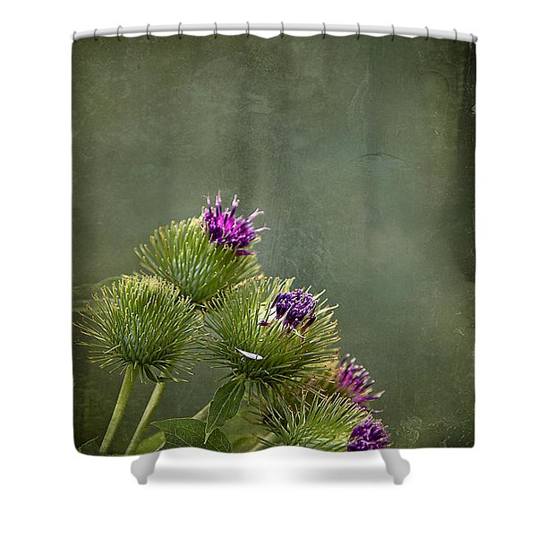 Up To The Point Shower Curtain