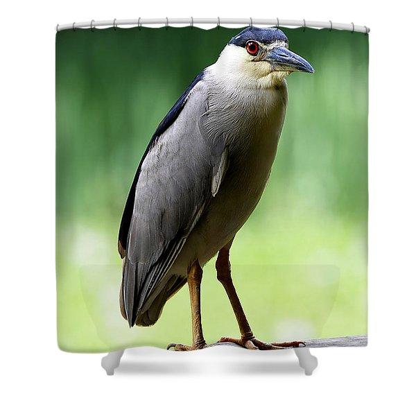 Upstanding Heron Shower Curtain
