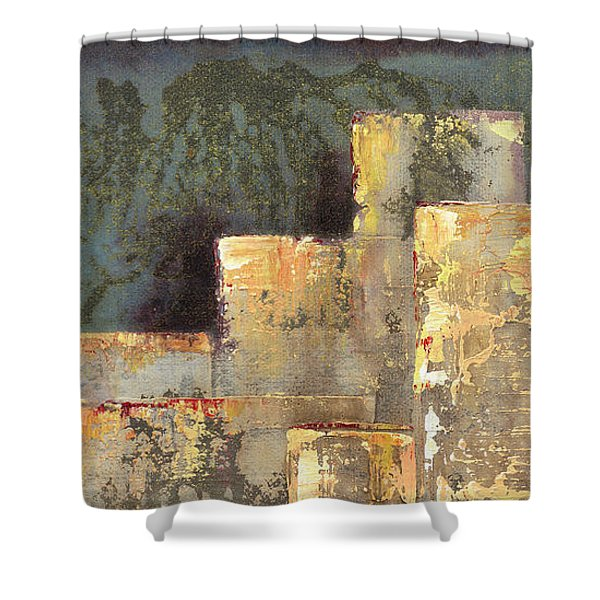 Urban Renewal II Shower Curtain