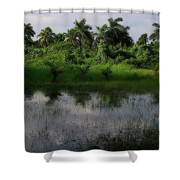 Urban Swamp Shower Curtain