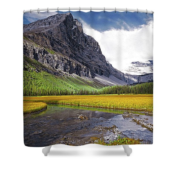 User Friendly Shower Curtain