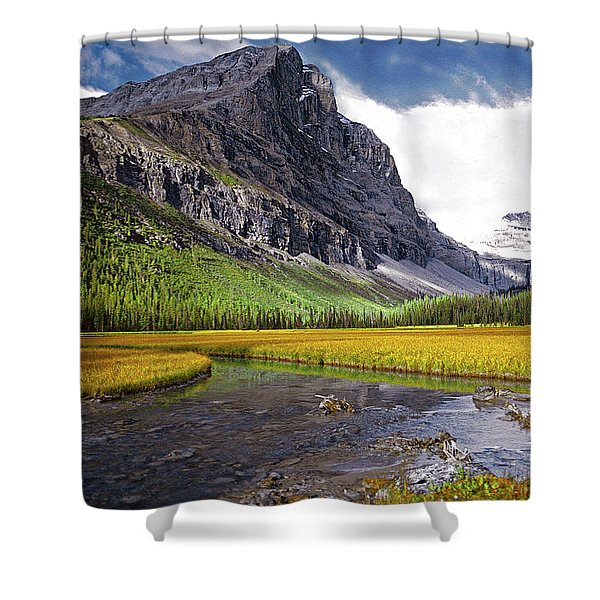 User Friendly Shower Curtain