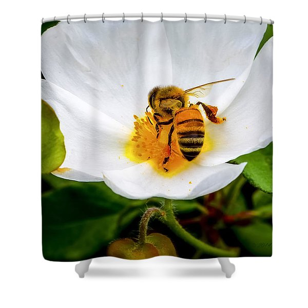 Vacaville Honey Bee Shower Curtain