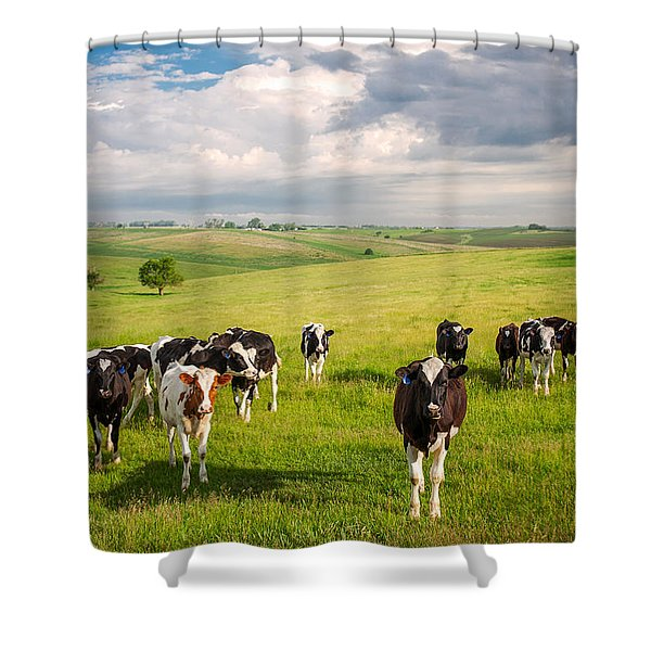 Valley Of The Cows Shower Curtain