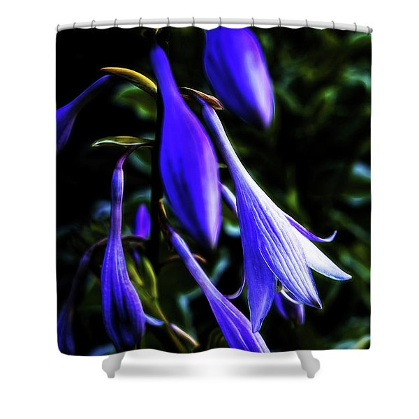 Varigated Hosta Bloom Shower Curtain