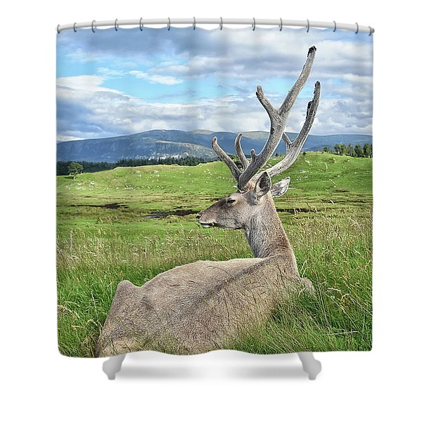 Velvet Shower Curtain