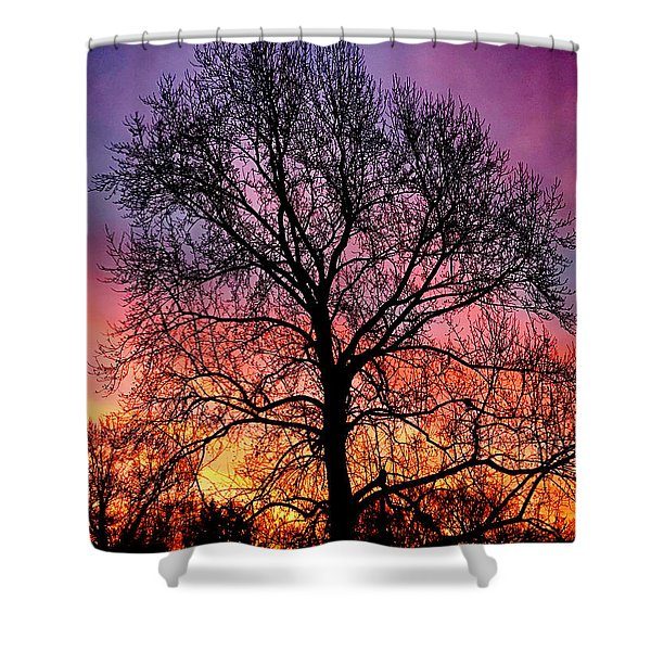 Velvet Mood Shower Curtain