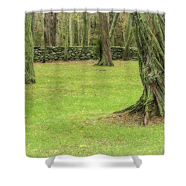 Shower Curtain featuring the photograph Venerable Trees And A Stone Wall by Nancy De Flon