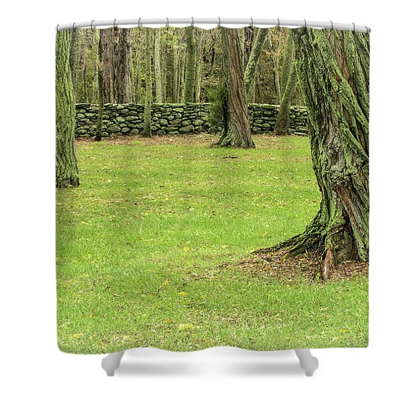 Venerable Trees And A Stone Wall Shower Curtain