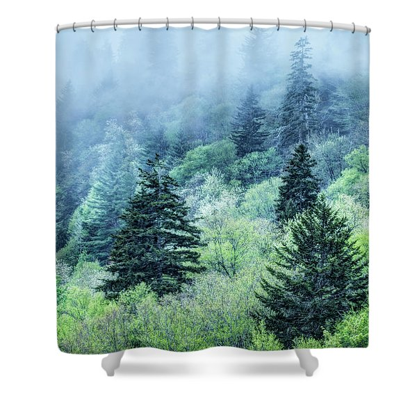 Verdant Forest In The Great Smoky Mountains Shower Curtain