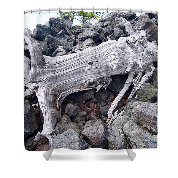 Ancient Ones V4 Shower Curtain
