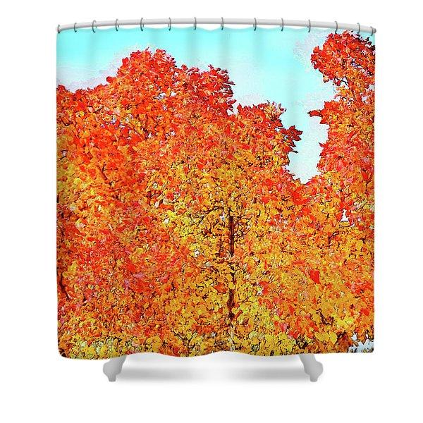 Vibrant Autum Trees Shower Curtain