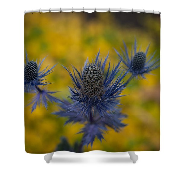 Vibrant Thistles Shower Curtain by Mike Reid