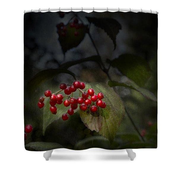 Viburnum Shower Curtain