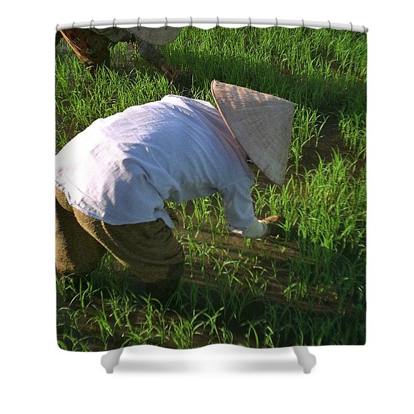Vietnam Paddy Fields Shower Curtain