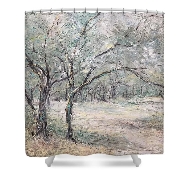 Vincents Olive Trees 2 Shower Curtain