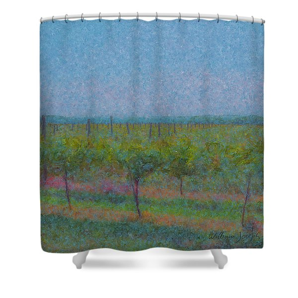 Vines In The Sun Shower Curtain