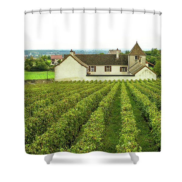 Vineyard In France Shower Curtain