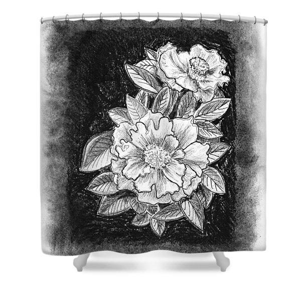Vintage Camellia  Shower Curtain