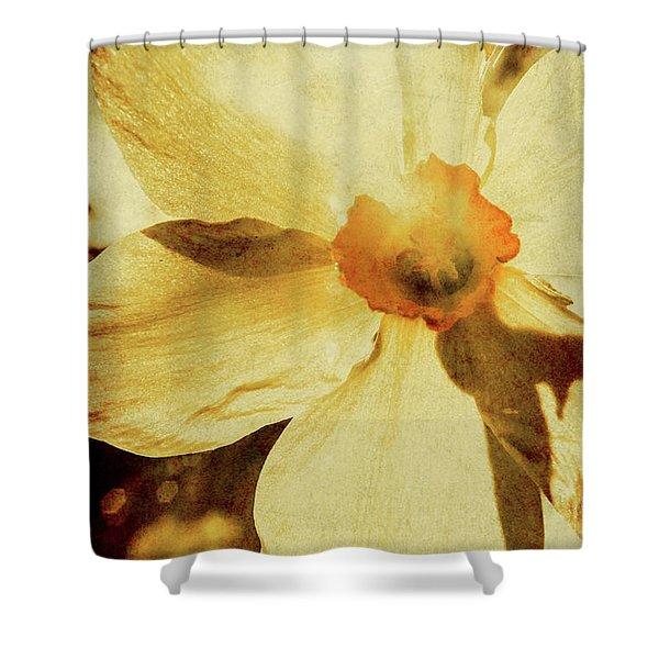 Vintage Daffodil Haze Shower Curtain