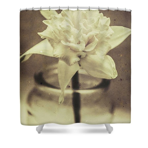 Vintage Floral Still Life Of A Pure White Bloom Shower Curtain