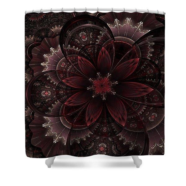 Vintage Queen Shower Curtain