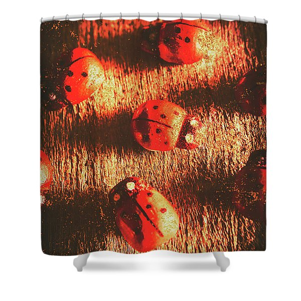 Vintage Wooden Ladybugs Shower Curtain