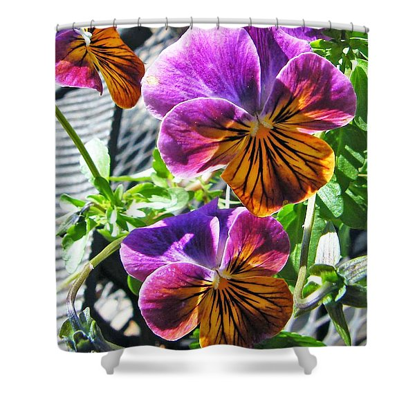 Violas Shower Curtain