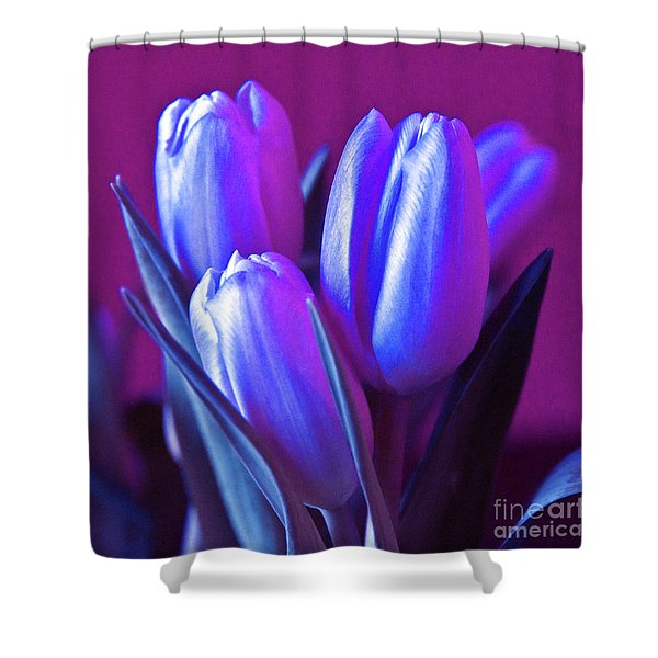 Shower Curtain featuring the photograph Violet Poetry Of Spring by Silva Wischeropp