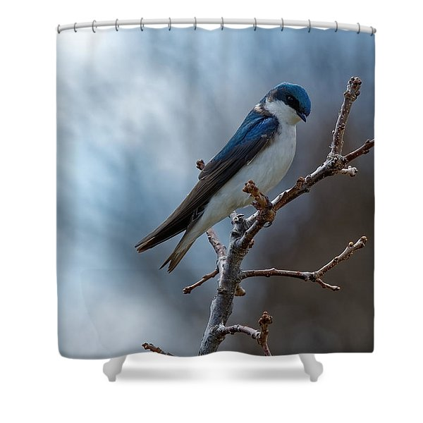 Vision In Blue Shower Curtain