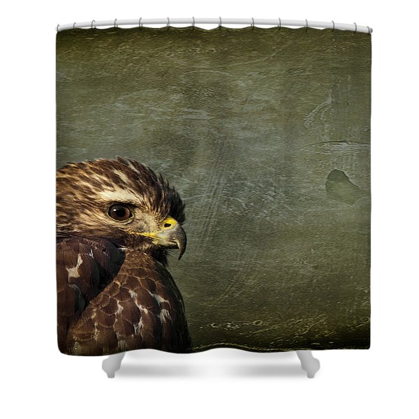 Visions Of Solitude Shower Curtain
