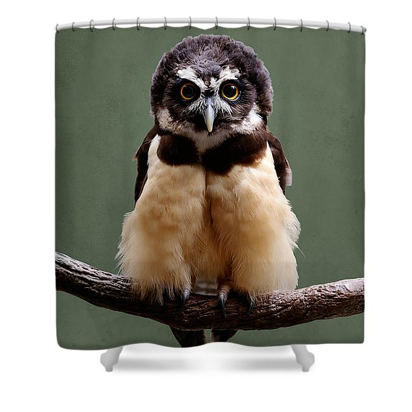 Visual Definition Of Adorable Shower Curtain