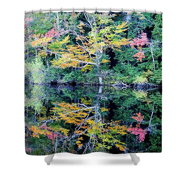 Vivid Fall Reflection Shower Curtain