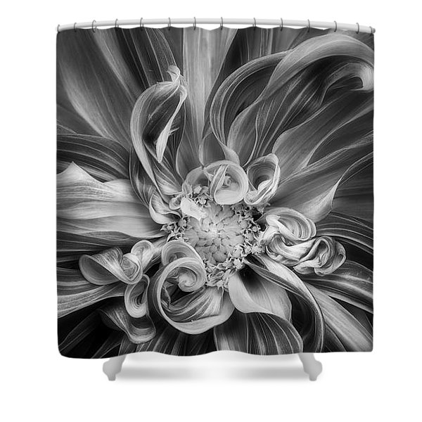 Shower Curtain featuring the photograph Vortex by Mary Jo Allen