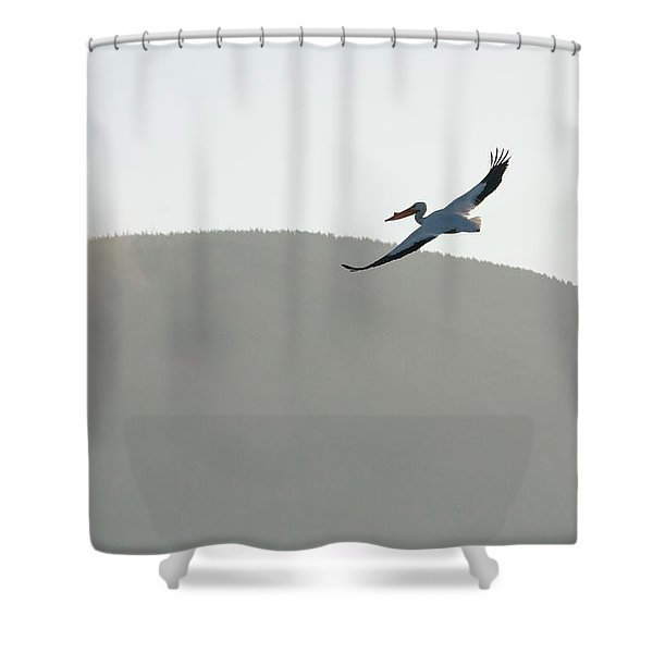 Voyager Shower Curtain